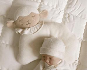 新生兒動物造型定型枕,限時5.0折,今日結帳再享加碼折扣