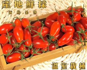 溫室細皮新鮮玉女小蕃茄,限時6.3折,今日結帳再享加碼折扣