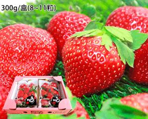 冬戀日本空運嬌豔大草莓,限時6.3折,今日結帳再享加碼折扣